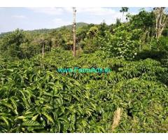 20 Acre Coffee estate for sale in Hassan