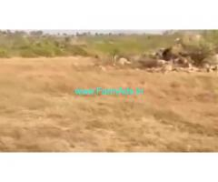 Low cost 150 Acres Agriculture Land  For Sale In Kalakada