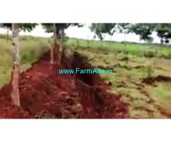 2.07 Acres Agriculture Land  For Sale In Turuvekere