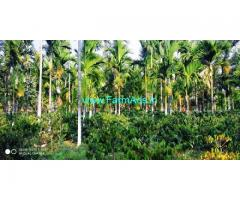 7 Acres Coffee Farm land for sale in Chikmagalur