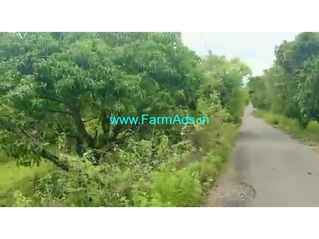 25 Acres Mango Farm Land for Sale at Kadhrolli
