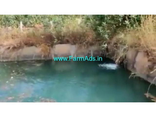 2 Acres Agriculture Land  For Sale In Sasalu