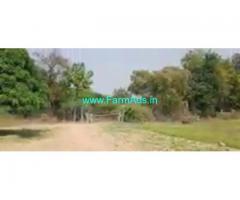 22 Acres Mango Farm Land  For Sale In Kurnool