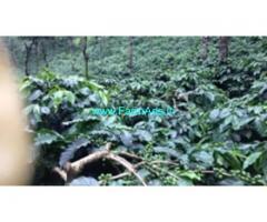 71 Acres Farm Land  For Sale In Chikmagalur
