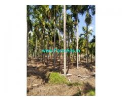10 acre areca nut Farm for Sale near Shimoga