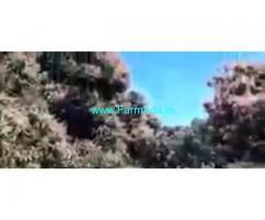 16 Acres Agriculture Land  For Sale In Srinivasapura