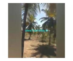 3 Acers Farm Land For Sale In Tumukur