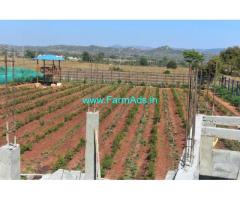 1.37 Acres Fully loaded farm land for Sale near DenkaniKottai