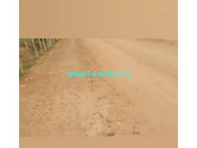250 Acres Agriculture Land  For Sale In Prakasam