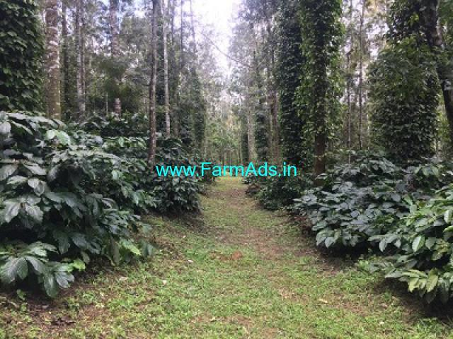 45 acre coffee estate for sale on Belur Mudigere road