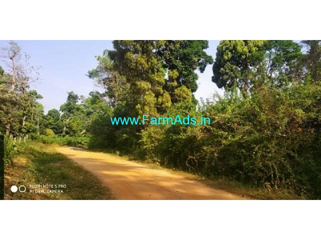 50 Acre Farm land for sale in Chikmagalur