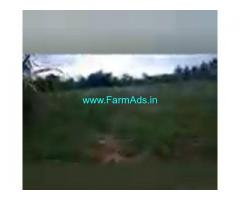 12 Acres Agriculture Land  For Sale In Bagepalli