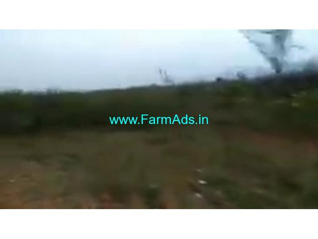 13 Acres Agriculture Land  For Sale In Bagepalli
