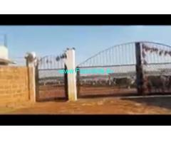 40 Acres Agriculture Land  For Sale In Rangareddy