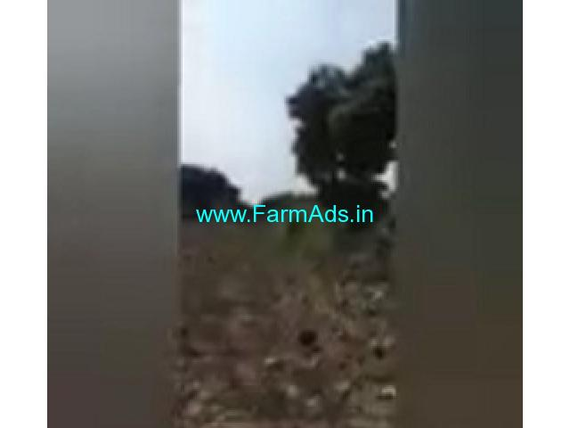 5 Acres Farm Land For Sale In Sulthanpur