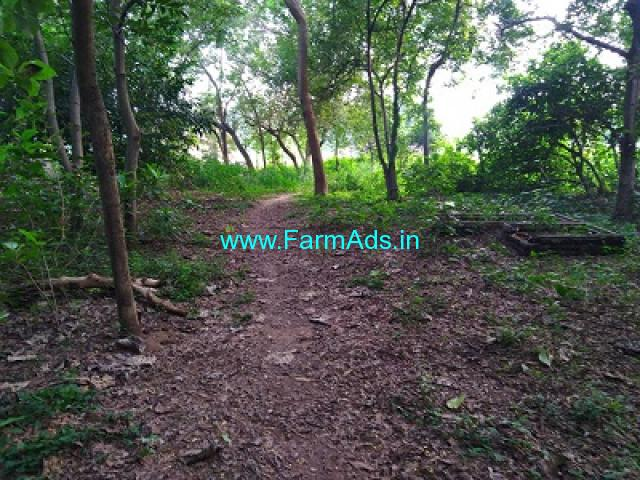 5.25 Acres Farm land for Sale at Thanjavur