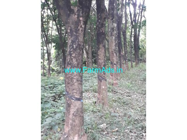 4 acres agriculture property for Sale at Belthangady