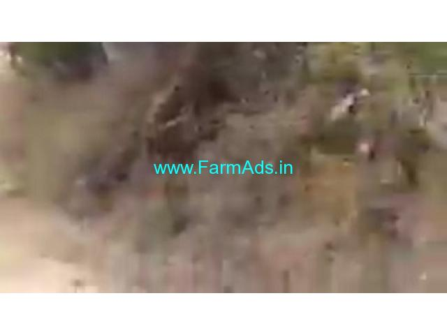 76 Acres Agriculture Land  For Sale In Jangaon