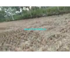 1 Acers Agriculture Land  For Sale In Warangal