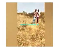 Low cost 100 Acres Farm Land For Sale In Kadiri