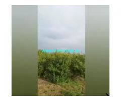 10 Acres Farm Land For Sale In Prakasham