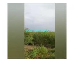 10 Acres  Agriculture Land  For Sale In Prakasham