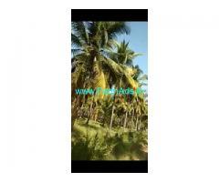 3 Acres Farm Land For Sale In Lakkavvanahalli
