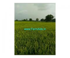10 Acres Farm Land For Sale In Rachepalli