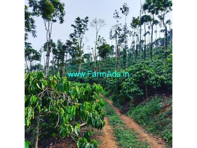 15 acre coffee estate for sale in Mudigere