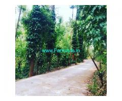 4 Acre coffee estate for sale in Chikkamagaluru