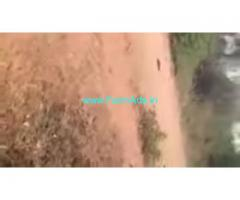 313 Acres Agriculture Land  For Sale In Kanigiri