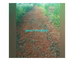 8.5 Acres Agriculture Land  For Sale In Nidigallu