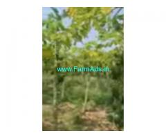 17 Acres Farm Land For Sale In Madanapalle