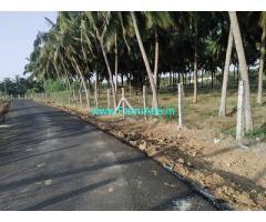 6.89 Acre Coconut Farm Land for Sale at Poosaripatti