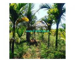 7 Acre Coconut and Arecanut plantation for sale near Chikmagalur