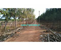 50 Acres Agriculture land Sale at Thanjavur