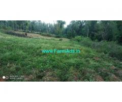 4 Acres Agri land for sale in Chikkamagaluru
