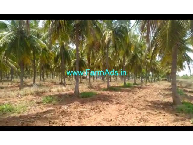 10 Acre coconuts farm for Sale at Sira taluk