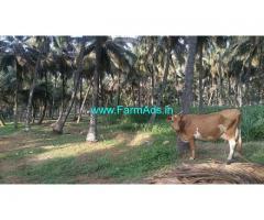 2.07 Acre Coconut Agriculture farm land for Sale at Samathur west