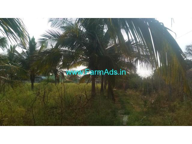 36 Gunta coconut farm Land for Sale near Kunigal