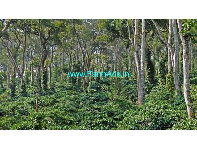 1200 acres of well managed coffee estate for sale in Valparai