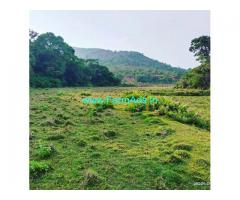 5 Acre agriculture land for sale in Mudigere