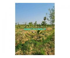Well developed 3 acres land for sale at Nellahlli village