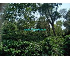 1.30 Acres Coffee Estate for Sale in Mudigere