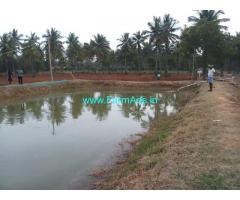 45 acres  farm land is for sale at Kabbahalli near Nanjangud