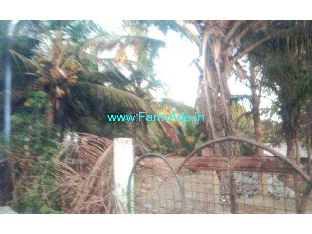 1.17 Acres Farmhouse For Sale In Mysore