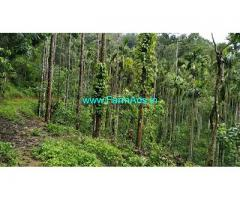 22 Acre Arabica Coffee Estate with Farm house sale in Mudigere