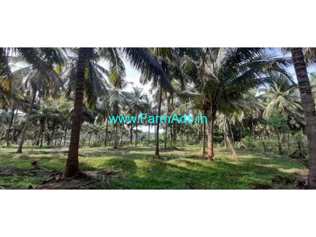 1.20 Acres Beautiful Coconut Farm Sale At Pollachi