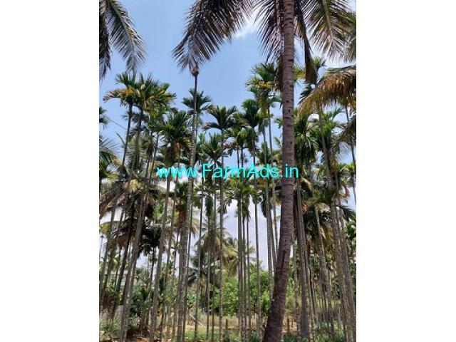 30 gunta Agricultural land available in Hesargahatta