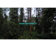 4 Acres well maintained Coffee estate for sale near Chikmagalur